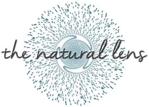 The Natural Lens